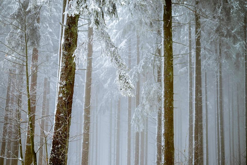 Conseils pour une v randa cocooning en hiver for Veranda hiver ete
