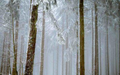 Conseils pour une véranda cocooning en hiver