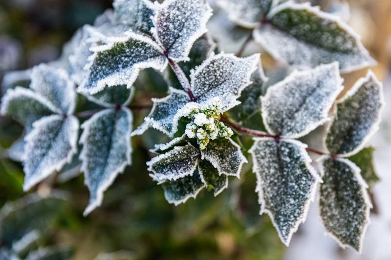 Une véranda isolée pour un hiver au chaud