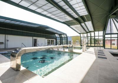 abri piscine 2